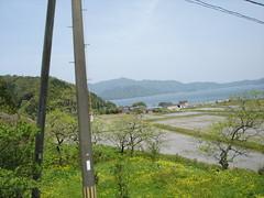 DSC05580 (komatsuma) Tags: 20060505 小浜線