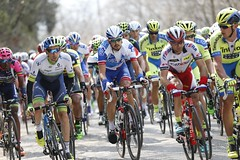 Tirreno-Adriatico 2015 - tape 4 (equipecyclistefdj) Tags: action competition ita italie camaiore cyclisme coursecycliste cyclismesurroute etape04 courseaetapes courseitalienne