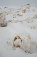 Ice, Sand, Snow (peterkelly) Tags: winter snow ontario canada ice digital sand greatlakes northamerica chunk lakehuron grandbend pineryprovincialpark thepinery