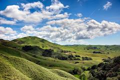 Hillside III (Joe Josephs: 2,861,655 views - thank you) Tags: california fineart naturallight hills pasorobles fineartphotography californiacentralcoast naturephotography travelphotography landscapephotography outdoorphotography joejosephsphotography copyrightjoejosephs2015 joejosephs2015