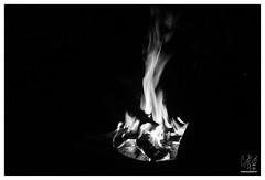 Camp fire #fire #codyyamaguchi #photo #Hawaii #bsa #boyscout #googleimages #google #bing #love #like (cody yamaguchi) Tags: love fire hawaii photo google like boyscout bing bsa googleimages codyyamaguchi