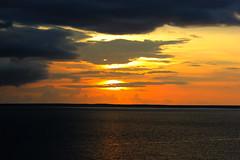 Sunsest, Darwin, Northern Territory, Australia (betadecay2000) Tags: from park trees sunset sea orange sun rot sol water weather del clouds port see soleil twilight sonnenuntergang coucher wolken australia darwin tags du gelb esplanade australien northern ufer puesta seen sonne bume sonnenaufgang  bicentennial bunt wetter meteo kste weer abendrot the 2014  auringonlasku abends   sunsest farbenprchtig   gn batm  sundset hinzufgen    27112014