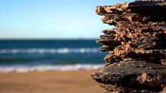 Lo mínimo y lo superfluo (anggarfer) Tags: sea sky beach rock mar spain sand playa arena murcia cielo cartagena roca minimum negrete calblanque regiondemurcia parqueregionalcalblanquemontedelascenizasypeñadelaguila