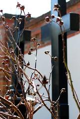 Erstanden ist der heil'ge Christ (amras_de) Tags: friedhof cemetery grave wiesbaden hessen cementerio kreuz cemitério grab temeto begraafplaats cimitero grafreitur cimetière hautausmaa cmentarz kruis groblje mezarlik kirkegård begravningsplats kapines cementiri nordfriedhof gravlund hilerri cimitir križ kyrkjegard hrbitov tombejo christiancross surnuaed cintorín coemeterium cruzcristã fosal cruzcristiana crocecristiana kršcanskikriž begraafplaas kierfecht cementèri kapseta croixlatine kristanakruco ladinarist krikšcioniukryžius krzyzlacinski pokopališce