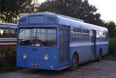 567 B8160D Altonian HA AML567H Alton 7 Sep 82 (Dave58282) Tags: bus ha londontransport aecmerlin aml567h altonian mb567