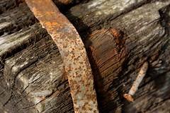 Traverse de Chemin de Fer (Bruno ArtPhoto) Tags: saint de rust traverse bruno chemin fer rouille dodet mard 77230