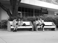 STRANGERS ON TWO BENCHES AT EPCOT (Visual Images1) Tags: blackandwhite bench orlando epcot 6ws florida monotone monday hbm