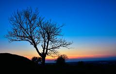 here comes the night (Beginner1970) Tags: sunset nikon erfurt thueringen sonne