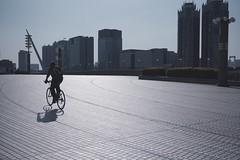 Ran through (t14zucca) Tags: japan lens tokyo dc pentax sigma f18 k3 1835mm hsm