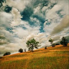 Zlatibor (Katarina 2353) Tags: summer film field landscape nikon europe serbia valley srbija zlatibor katarinastefanovic katarina2353