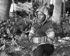 Heh Heh (Oliver Leveritt) Tags: blackandwhite woman monochrome hawaii waikiki oahu candid honolulu waikikibeach afsdxvrnikkor18200mmf3556gifed oliverleverittphotography nikond7100