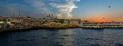 IMGP2304-2 (UmitCukurel) Tags: nightphotography sea night cat turkey puente mar pentax turkiye istanbul gato turquia bogazici bosphorus kedi kizkulesi maidentower k3ii
