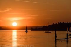 Coucher de soleil sur le lac de Constance (dom67150) Tags: sunset bodensee coucherdesoleil lakeconstance lacdeconstance