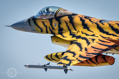 """ Hard To Be Humble"" (SJAviation.net) Tags: spain nikon aviation military jet zaragoza viper nato tigermeet fightingfalcon belgianairforce aviationphotography f16am ala15 31squadron nikonaviation sjaviationnet"