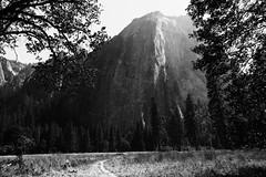 Yosemite, CA (lotos_leo) Tags: california ca mountain nature landscape nationalpark outdoor yosemite