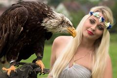 Begegnung (Godwi_) Tags: girl birds animals tiere eagle adler bald meeting blond vgel zwei mdchen vogel greifvgel greifvogel begegnung weiskopfseeadler blumenkrone