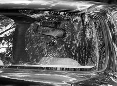Reflections and light (pilechko) Tags: trees light blackandwhite monochrome car reflections pennsylvania newhope windscreen