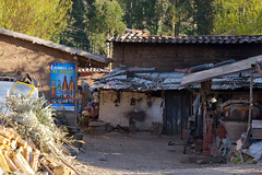 Cool backyard (Bahanick (Nxt Up: the trip to Machu)) Tags: park camera original light white black art alpaca nature colors up look machu inca cuzco composition contrast train work trek dark de for site reflex amazon rainforest raw foto with arte bright image lima good cusco poor picture shapes dirty per pichu trail national saturation su lama visual manu emotions per curiosity colori con luce madre disease outskirts dios forme archeological sensation riflesso composizione ande scuro sensazioni immagine emozioni chiaro tonality visivo