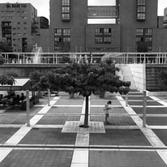 Milano (Valt3r Rav3ra - DEVOted!) Tags: blackandwhite bw 120 6x6 tlr film rolleiflex university milano universit streetphotography ilforddelta400 biancoenero analogico urbanvisions medioformato milanobicocca visioniurbane valt3r valterravera