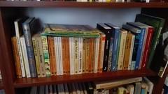 Julio Verne (ciudad imaginaria) Tags: libros books julesverne julioverne
