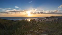 Golden hour (Marcus Antonius Braun) Tags: goldenhour vlissingen zeeland thenetherlands grass green sea gold sand beach clouds sunset
