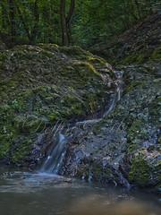 rdgmalom-vzess (Delfinibi) Tags: hdr hungary ungarn zuiko outdoor mzuiko magyarorszg termszet nature natur natural river patak visegrd visegrdihegysg rdgmalomvzess vzess erd forest waterfall aptktivlgy