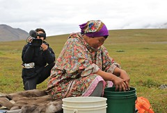 Documentary Camera Man Chukchi Woman Tundra Chukotka East Coast Russia Far East (eriagn) Tags: bear travel sunset summer woman seascape expedition rock puppy fur landscape photography moss cloudy russia wildlife photojournalism documentary peaceful overcast social tent polarbear seal granite whale remote isolation lichen wildflowers zodiac geology teepee peaks volcanic uninhabited tranquil isolated tundra beringsea ecosystem harvesting latesummer mountainous chukotka huskypuppy russiafareast spiritofenderby heritageexpeditions bountifulsea eriagn ngairelawson ngairehart chukchifamily