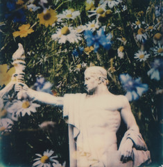 Stone Flowers 11 (www.cjo.info) Tags: england people sculpture plant man flower london art film statue strand polaroid sx70 flora unitedkingdom doubleexposure multipleexposure aldwych integral analogue technique printed stoneflowers geocity printed1 theimpossibleproject geostate geocountrys sx70color instantlab geo:lat=51513069444445 geo:lon=0117394444445
