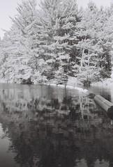 Pog Lake Dam (KevinCollins00) Tags: autumn blackandwhite bw ontario canada fall film nature water monochrome analog river outdoors mono 2000 super plus algonquin ilford fp4 yashica madawaska algonquinpark fx3 filmisnotdead filmsnotdead believeinfilm