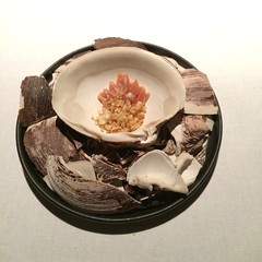 Mahogany clam with a dashi of Norwegian shiitake mushrooms and seaweed