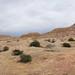 Tucume pyramids
