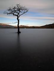Water everywhere (kenny barker) Tags: scotland trossachs lochlomond millarochybay