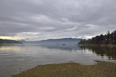 SERENITY MY COMPANY  -  (Selected by GETTY IMAGES) (DESPITE STRAIGHT LINES) Tags: morning sea canada reflection tree nature wet water beautiful beauty sailboat boats island death islands bay coast boat still nikon flickr day waves branch sailing peace bc yacht britishcolumbia decay branches tide ships peaceful tranquility wave calm foliage vancouverisland driftwood coastal sail coastline naturalbeauty tidal mothernature d800 colesbay demise moored beautifulbritishcolumbia paulwilliams sernity nikon2470mm nikkor2470mm nikond800 despitestraightlines colesbaybc colesbayregionalpark colesbaycanada ilobsterit