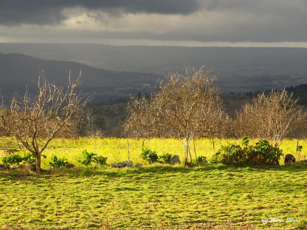Águas Frias (Chaves) - ... contrastes ...