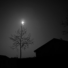 Solar Eclipse (Vee-BY) Tags: bw sun france nature soleil solar eclipse europe nb event partial magny 2015 metez