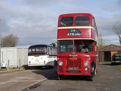 Western meets Western (Rightgoodmotor) Tags: bus scotland scottish stephen western titan smt leyland kirkby 2015 pd3 gvvt msd407 ad1543