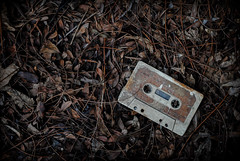 Musical Memory (Cassette) (Savior Eighty Nine) Tags: old autumn light music orange naturaleza history luz nature leaves vintage hojas key floor branches dry company recuerdo bands tape vida memory musica otoo lying cassette tapes viejo naranja bandas abandonment historia direct compaia intermedia abandono piso ramas lifetime intermediate secas tirado clave casete directa
