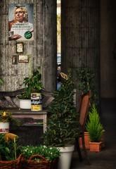 Komm nicht ohne Blumen ...! (dannicamra) Tags: street city flowers urban plant germany bayern nikon pflanze blumen stadt regensburg mothersday muttertag strase d5100
