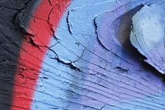 Detail (designwallah) Tags: wood toronto ontario canada macro paint urbanexploration queenstreetwest laneways alleys ruelles punkmacro olympusomdem5 olympusm60mmf28macro