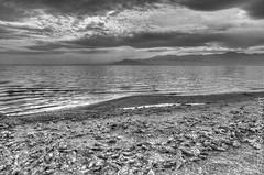 _IGP2532_3_4 (blackcloudbrew) Tags: bw riverside northshore hdr deadfish saltonsea da15limited pentaxk5