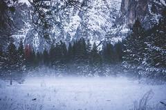 Yosemite-El-Capitan-Meadow-Sunset-3 (hotcommodity) Tags: california winter yosemite yosemitenationalpark sierras icefog mercedriver icemist usnationalparks