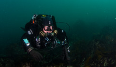 IMG_8829 (Josh.Cummings) Tags: ocean divers dive newengland diving ann cape drysuit rockport rebreather ccr cummings revo coldwater rockportma nitrox joshcummings joshuacummings nategarrett joshcummingsunderwater newenglanduwphotographywater capeanndivers jrcummings