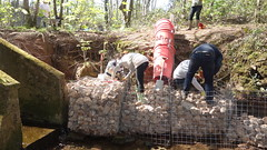 BagsOfHelp. Friends of Henllys LNR, Torfaen. May 2016 (Keep Wales Tidy) Tags: building team help bags lnr gabions henllys