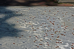 Pennies on the grave of Benjamin and Deborah Franklin, Christ Church Burial Grounds, Philadelphia (davidvictor513) Tags: philadelphia cemetery grave outdoors pennsylvania patriot benjaminfranklin pennies foundingfathers burialground declarationofindependence gravemarker christchurchburialground famousamericans