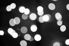 #23 Project365 - Lights (davidjmclare89) Tags: blur 35mm project lens lights nikon bokeh daily outoffocus 365 nikkor dx dxlens project365 bokehlicious
