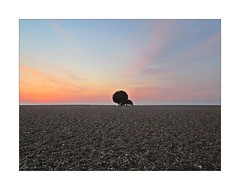The Scallop (mr_snipsnap) Tags: morning sea sculpture art beach metal sunrise coast suffolk sand britten benjamin scallop aldeburgh