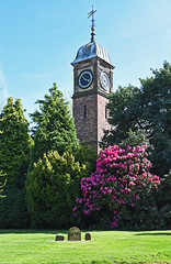Clock Tower and Rhododendrons. (MWBee) Tags: grass warrington nikon cheshire clocktower d750 gravestones walton rhododendrons waltonhallgardens mwbee