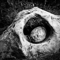Stone in stone hole .... (martina.stang) Tags: abstract nature holding emotion symbol stones surreal security pregnant secure protection stein symbolic pothole protect protected sicher geborgen stoneinahole stoneinastone