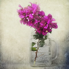 Still Life With Bougainvillea (ulli_p) Tags: flowers light stilllife art texture asia colours blossoms bougainvillea textured likeapainting flickraward texturedphoto awardtree artofimages exoticimage canoneoskissx5