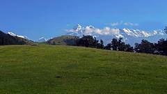 The sunshine meadow !! (Lopamudra!) Tags: india mountain mountains nature trek landscape landscapes meadow uttaranchal himalaya range himalayas highaltitude trishul kumaon lopamudra uttarakhand kumaun uttarkhand trisul lopamudrabarman brahmatal brahamatal